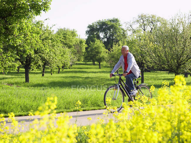 Senior man riding bike — Stock Photo