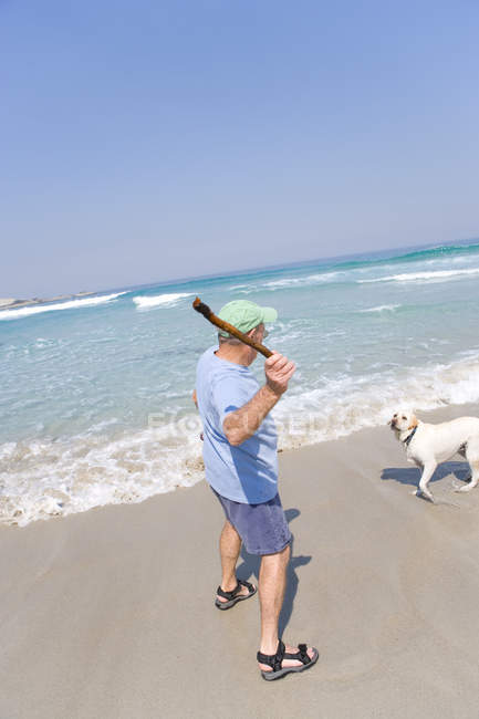 Rear view of man preparing to throw stick for dog on beach — Stock Photo