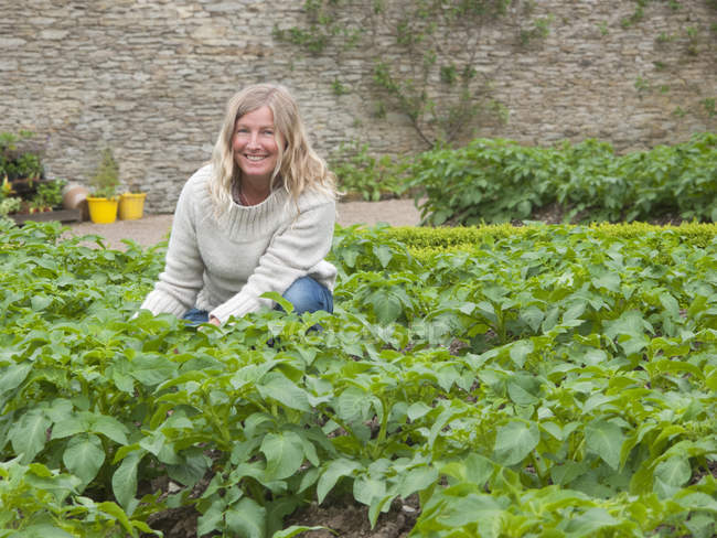 View of woman with blond hair planting on walled garden — Stock Photo