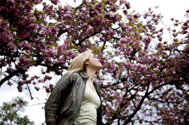 Mulher posando sob árvores florescendo — Fotografia de Stock
