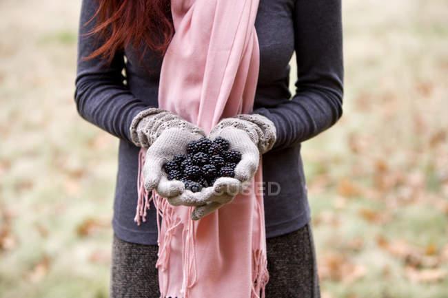 Femelle mains tenue dewberries — Photo de stock