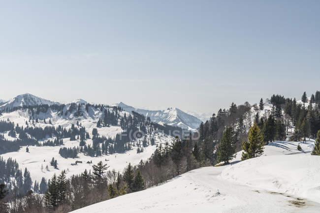 Заснеженный зрения Zwolferhorn, Санкт-Гильген, Австрия — стоковое фото