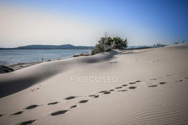 Sand dunes, Cagliari, Sardinia, Italy — стоковое фото