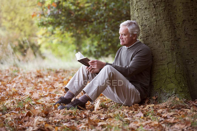 Senior man seatting by tree and reading book — Stock Photo
