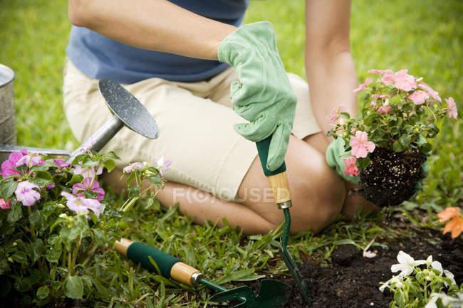 Cropped image of woman gardening — Stock Photo