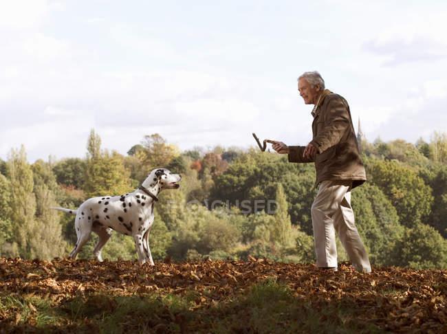 Ältere Mann Stick Dalmatiner Hund werfen — Stockfoto