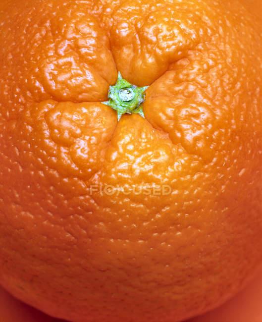 Closeup Fresh orange fruit — Stock Photo