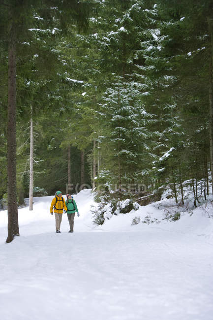 Happy couple holding hands and backpacking in snowy woods — Stock Photo