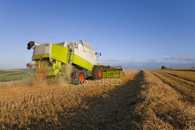 Combiner la récolte de blé — Photo de stock