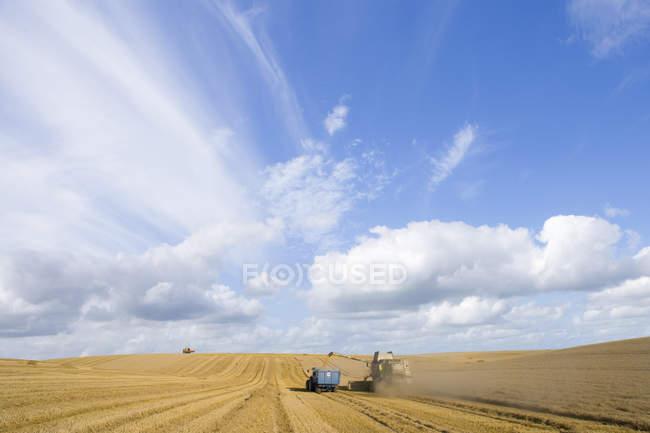 Combinare la raccolta del grano e rimorchio di riempimento — Foto stock