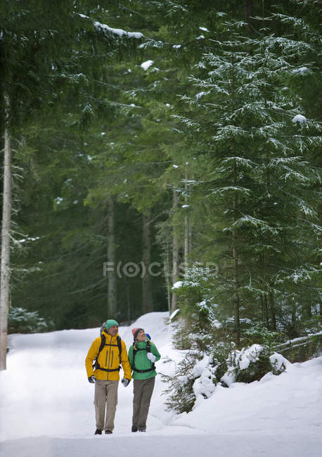 Couple holding hands and backpacking in snowy woods — Stock Photo