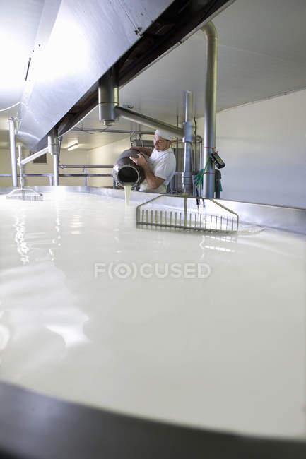 Vista distante de queijeiro derramando leite no tanque com coalho na fábrica de queijo — Fotografia de Stock