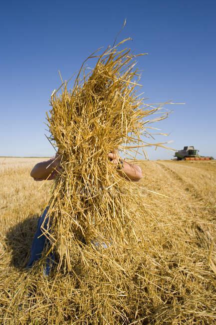 Vue d'agriculteur ramasser la paille sur le champ et moissonneuse en arrière-plan — Photo de stock
