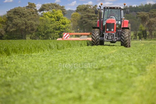 Tractor cutting silage in farm field — Stock Photo