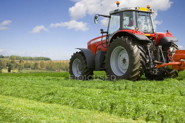 Ensilage de coupe tracteur dans champ de ferme — Photo de stock