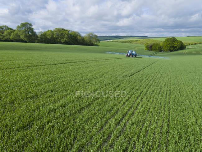 Tracteur de pulvérisation des cultures dans les champs agricoles vert avec pesticide — Photo de stock