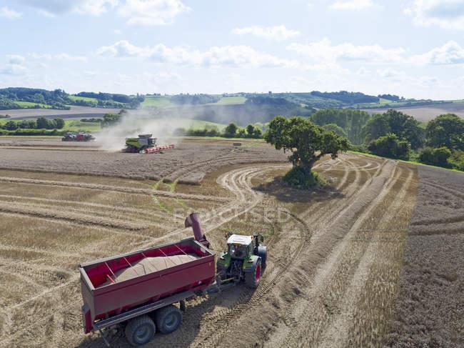 Luftaufnahme des Sommer Land Landwirtschaft Landschafts- und Weizen Feld geerntet, indem man Mähdrescher mit Anhänger und Korn im Vordergrund — Stockfoto