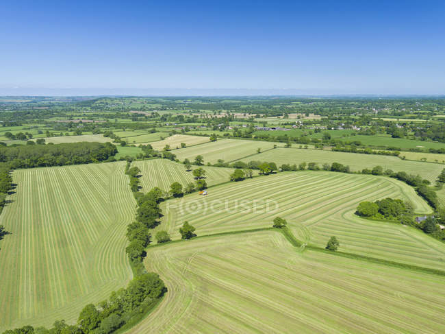Aerial view of summer grass silage fields being harvested, farmland and country landscape — Stock Photo