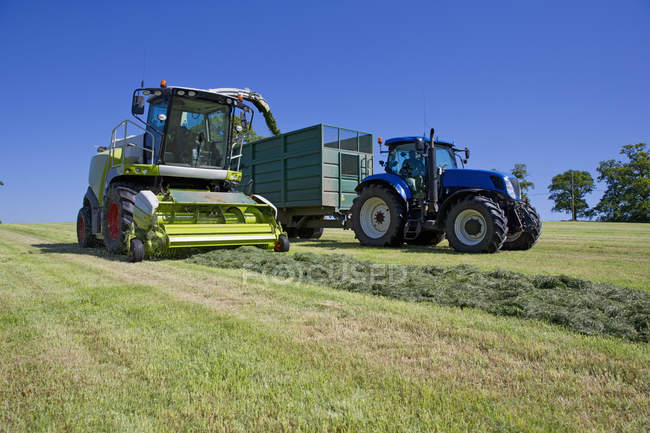 Forage harvester cutting grass silage crop in field and filling tractor trailer — Stock Photo