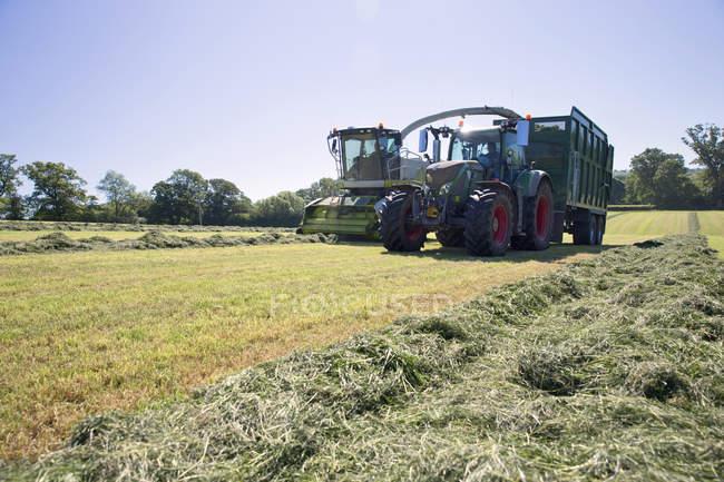 Trince semoventi taglio erba insilato raccolto nel campo e riempire il rimorchio del trattore — Foto stock