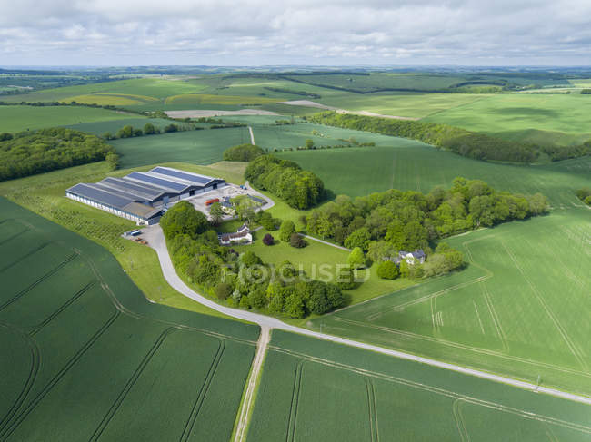 Aerial view of farm and crops in green fields — Stock Photo