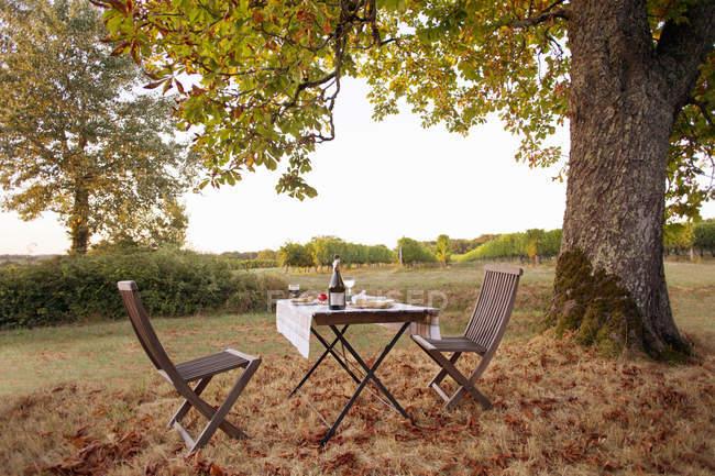 Almoço ao ar livre na mesa com cadeiras sob a árvore com folhas de outono, no dia — Fotografia de Stock