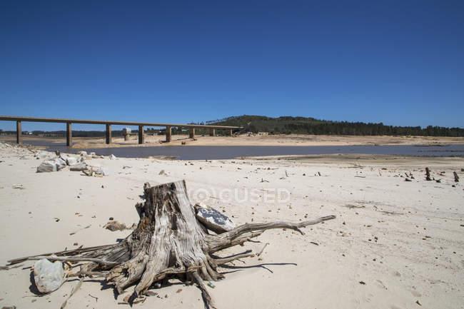 Sequía por el paisaje en la zona de Western Cape en Sudáfrica - foto de stock