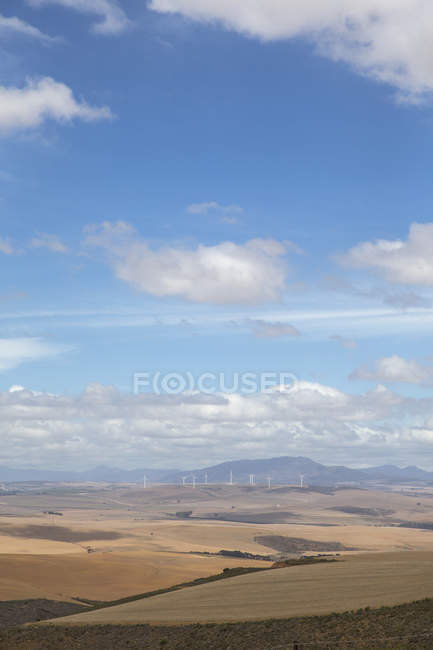 Arid Agricultural Landscape In Western Cape Region Of South Africa — Stock Photo