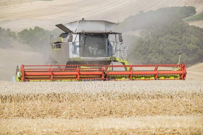 Ansicht der Combine Harvester schneiden Sommer Ernte Feld Weizenernte auf Bauernhof — Stockfoto