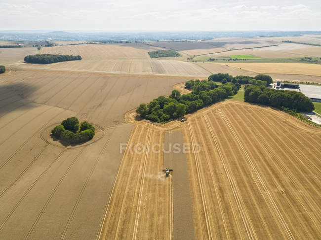 Harvest aerial landscape of combine harvester cutting summer wheat field farm crop — Stock Photo