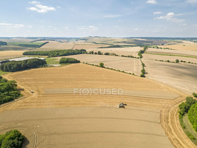 Harvest aerial landscape of combine harvester cutting summer wheat field farm crop tractor trailer and blue sky — Stock Photo