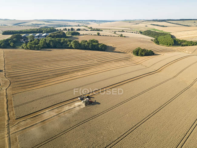 Harvest aerial farm landscape of combine harvester cutting summer wheat field crop with tractor trailer — Stock Photo