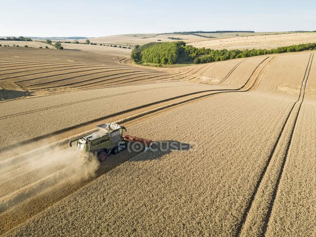 Harvest aerial landscape of combine harvester and summer wheat field farm crop — Stock Photo