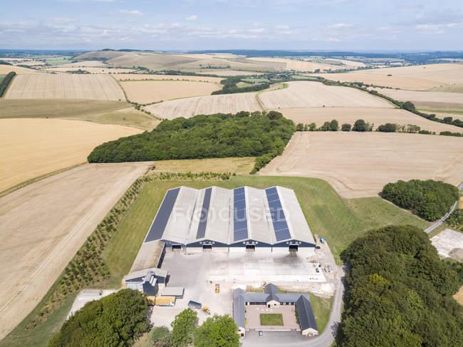 Paesaggio aereo di edifici agricoli e campi di grano e orzo raccolto estate — Foto stock