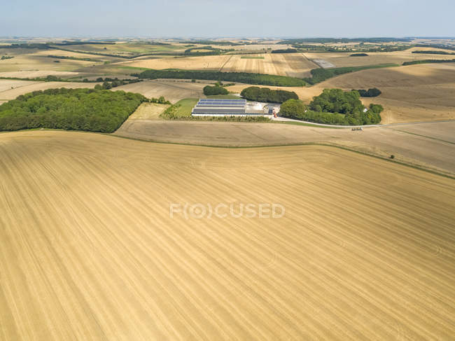 Aerial landscape of harvested summer farm wheat and barley fields — Stock Photo