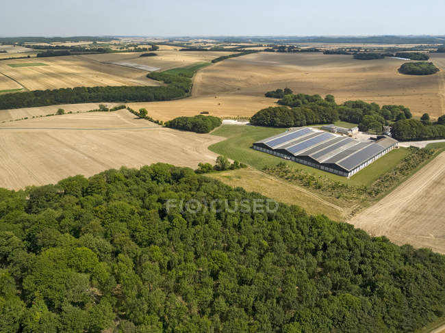 Aerial landscape of farm buildings harvested summer wheat and barley fields and forest trees — Stock Photo