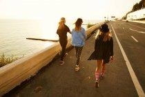 Amigos caminando en primera línea de mar - foto de stock
