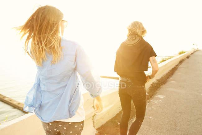 Amis marchant sur le front de mer — Photo de stock