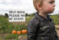 Маленький хлопчик з реклами на тлі гарбузів — стокове фото