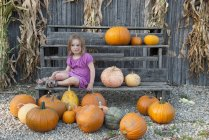 Girl sitting with a large assortment of pumpkins — Stock Photo