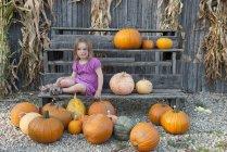 Chica sentada con una gran variedad de calabazas - foto de stock