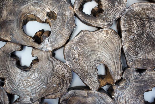 Piezas de madera de sección transversal - foto de stock