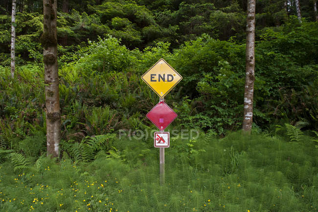 End sign posted at edge of woods — Stock Photo