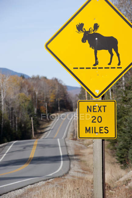 Moose crossing sign along highway — Stock Photo