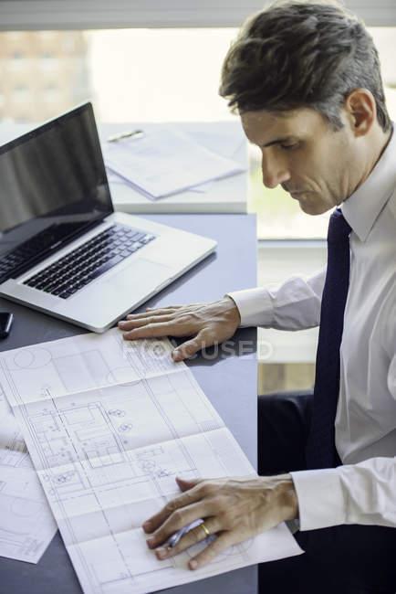 Homem que trabalha com plantas no escritório — Fotografia de Stock