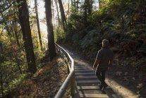 Зріла людина ходіння по сходах в лісі — стокове фото