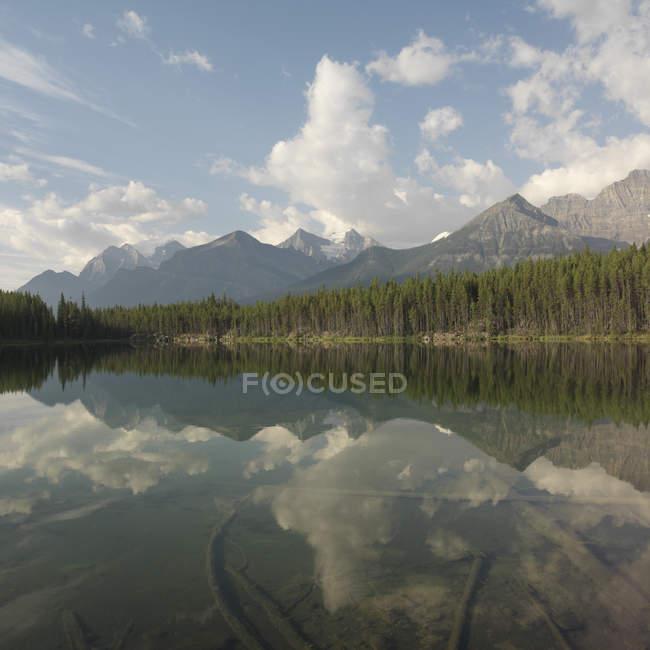 Озеро с горы и леса отражения — стоковое фото