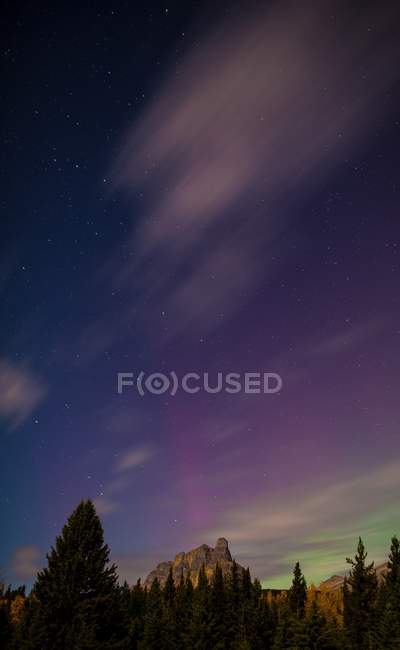 Mountain with forest and starry sky — Stock Photo