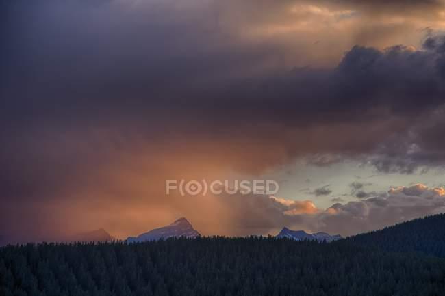 Bewölkter Himmel über dem Wald in Bergen — Stockfoto