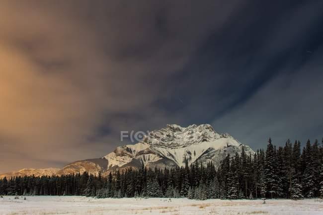 Пейзаж с снежные горы и лес — стоковое фото